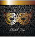 Beautiful mask of lace vector