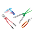 A Colorful Set of Gardening Equipment vector image vector image