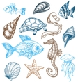 marine life drawing vector image