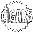 Cigars vector image