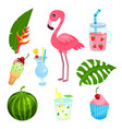 summer time set tropical exotic elements for vector image
