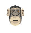 Monkey abstract isolated vector image