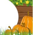 Pumpkins on the wooden background vector image