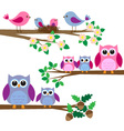 Owls and birds vector image