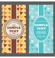 Template packaging multicolored geometric ornament vector image