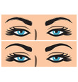 eyebrow before and after correction vector image