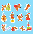 set of christmas new year stickers with cute dog vector image