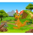 funny kangaroo cartoon in the jungle vector image