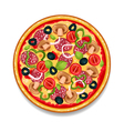 Colorful Round Tasty Pizza vector image