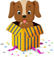 dog cartoon coming out of gift box vector image