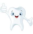 Cartoon tooth vector image