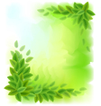 Sunny background with green leaves vector image vector image
