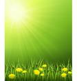 Solar landscape vector image