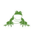 green frog isolated frog on white background vector image