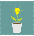 Plant in the pot with lamp bulb Growing idea conce vector image