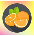 sweet oranges flat icon vector image