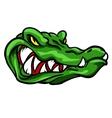 Alligator mascot team label design vector image
