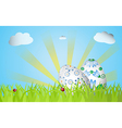 Easter design with grass sunrise two eggs vector image