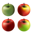 gradient apples vector image