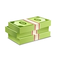 Pack of bank notes vector image vector image
