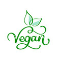 vegetarian eco concept hand vector image