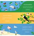 Birds horizontal banners set vector image