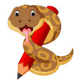 cute snake holding pencil vector image