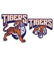angry tiger mascot vector image