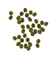 green coffee realistic beans isolated on white vector image
