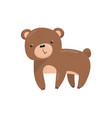 brown bear woodland cute animal cartoon vector image