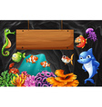 Sea animals swimming around wooden sign vector image vector image