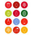 berries icon set in bright tones vector image