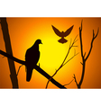 Bird on Branch vector image