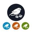 Round Icons Bullfinch vector image