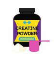 sports nutrition creatine powder professional vector image