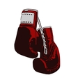 two boxing gloves vector image