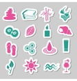 spa stickers vector image