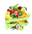 Circle shape contains different fruits with ribbon vector image