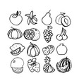 fruit set black line art vector image