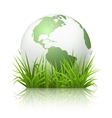 Globe on grass vector image vector image