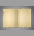 Blank cracked book pages vector image vector image
