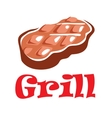 Tasty grill meat vector image