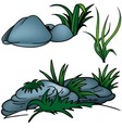 Grass And Rocks vector image vector image
