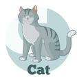 ABC Cartoon Cat vector image