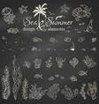 set of chalk marine design elements vector image