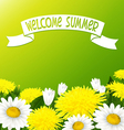 Summer flowers vector image