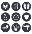 Hairdresser spa icons Diet cocktail sign vector image