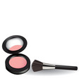 pink blush with brush vector image
