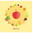 Set of Fruit in Flat Design vector image