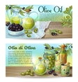 Olive Oil Horizontal Concepts vector image